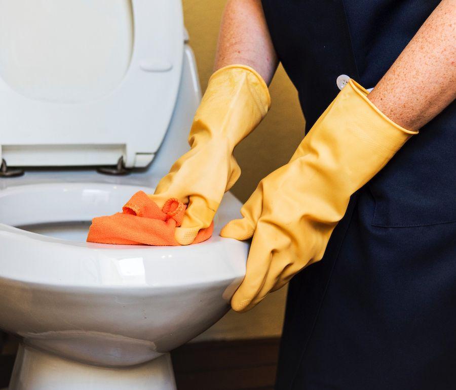 Une aide-ménagère nettoie la cuvette des toilettes