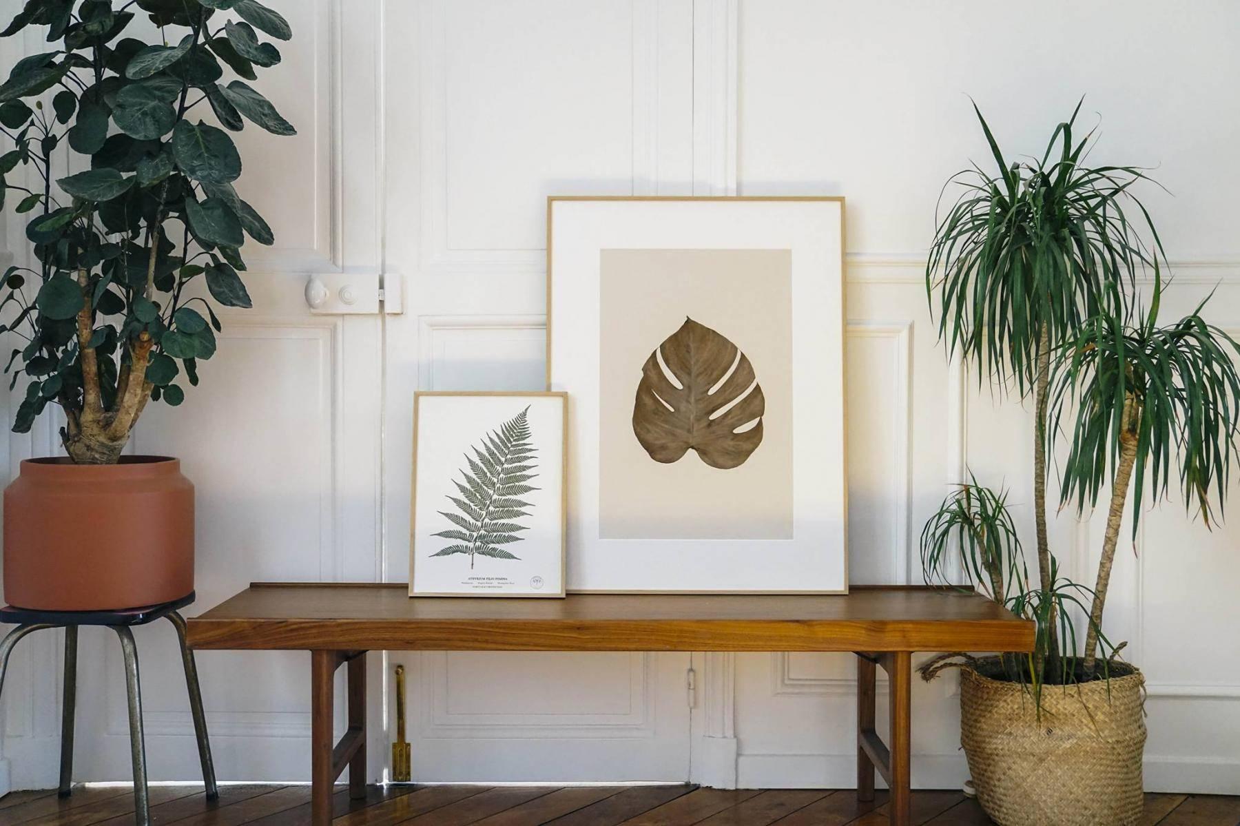 carte-cadeau-herbarium